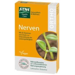 Vitamine ortomolecolari Sistema Nervoso FITNE